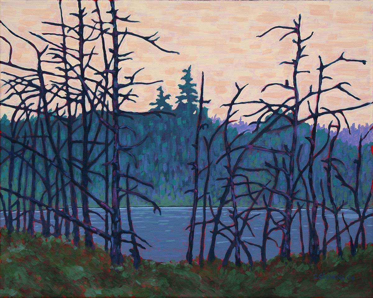 Algonquin Wetland painting by C. Stevens